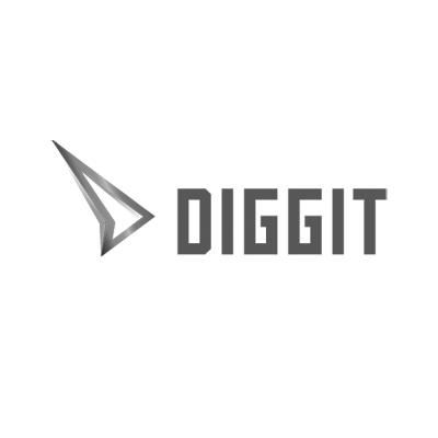 Zlata Diggit nagrada 2017